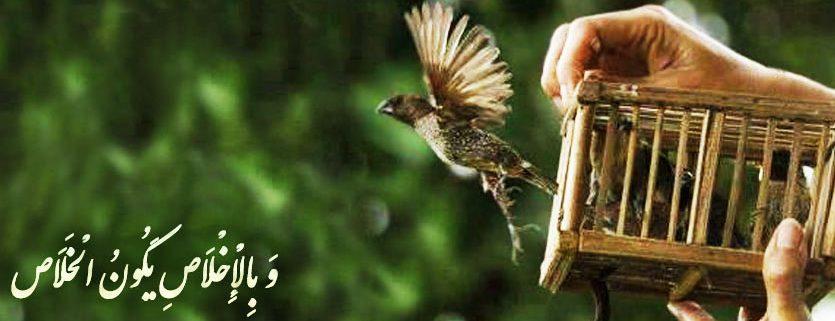 به وسیله اخلاص است كه انسان [از اسارت ها] آزاد مى شود.»