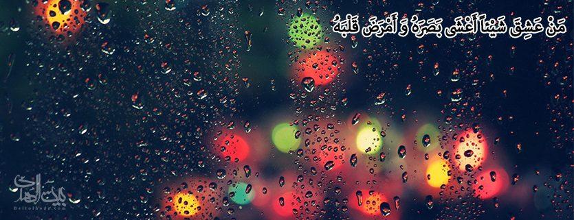 هرکس به چیزی عاشق گردد، چشمش را کور و دلش را بیمار نماید