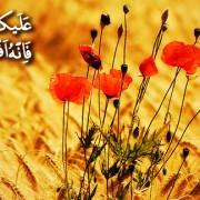 بر تو باد بر احسان که آن بهترین زراعت است