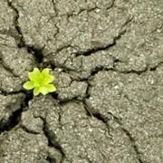 همانا پیروزی همراه صبر است و گشایش در معیت سختی ها و همانا همراه هر سختیی آسانیست