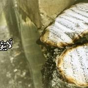 روزگاری بر مردم خواهد آمد که از قرآن جز نشانی باقی نخواهد ماند